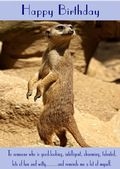 "Meerkat-Happy Birthday - ""Reminds Me A Lot Of Myself"" Theme"